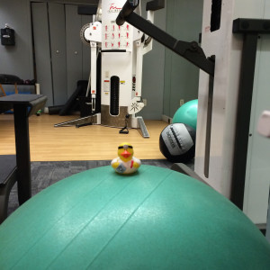 Ducklings and a gym membership? It must be spring in Cambridge! A month at Wellbridge, with its skylit pool, is among the items in our silent auction.